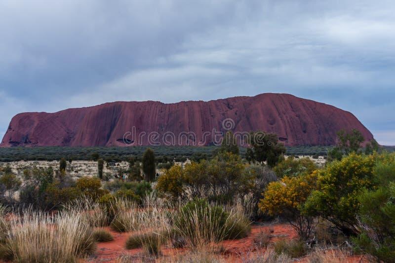 En scenisk sikt av Uluru-Ayers vaggar i den molniga morgonen, Australien royaltyfri fotografi