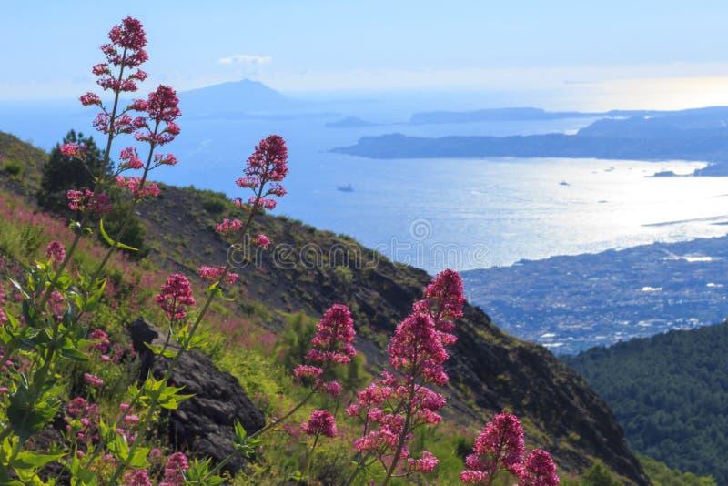 En scenisk sikt från Mount Vesuvius arkivbild