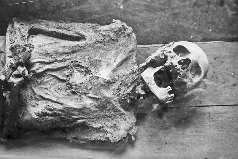 En scull och ben, gravvalv i kloster arkivbild