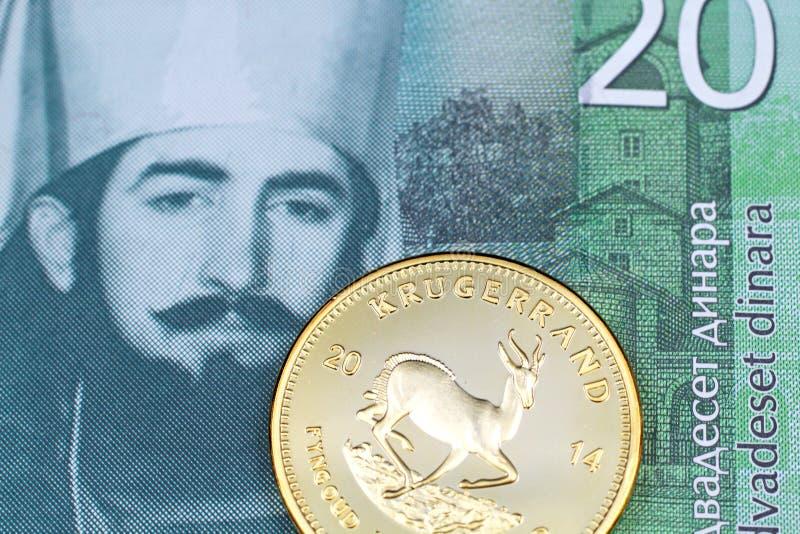 En serbisk sedel för dinar tjugo med ett guld- krugerrandmynt arkivbilder