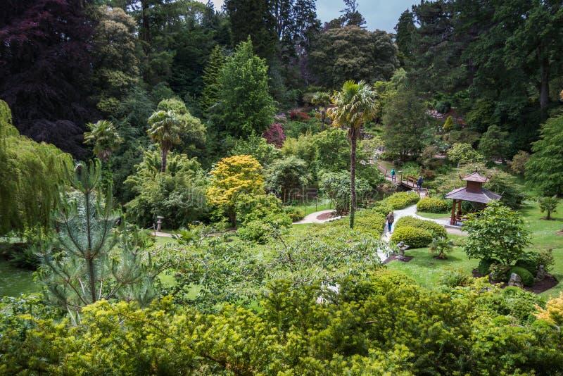 En sikt över en kinesisk trädgård i Irland royaltyfria bilder