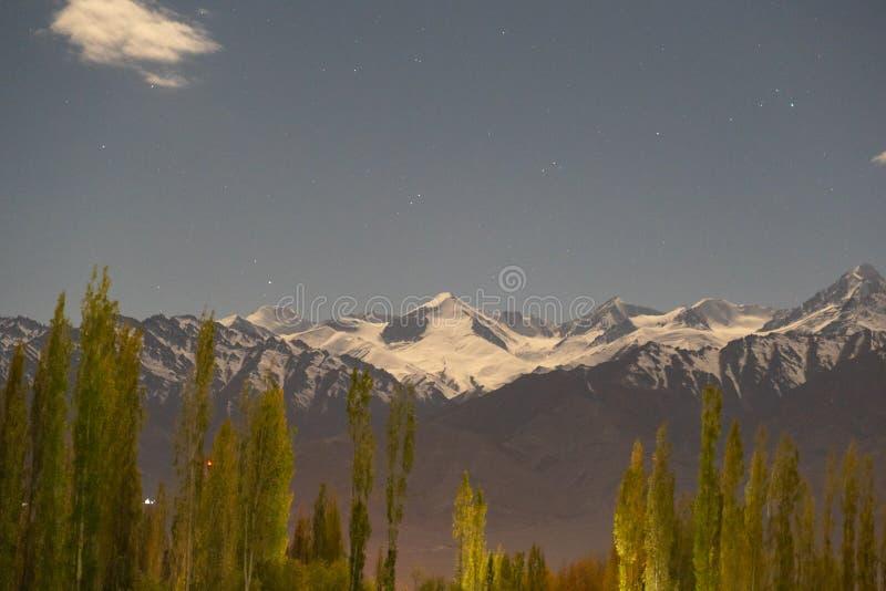 En sikt av berget och att sörja träd med snö överst på nattetid i Leh, Ladakh, Indien royaltyfri foto