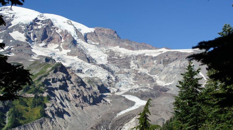 En sikt av den Nisqually glaciären på Mount Rainier arkivfoto