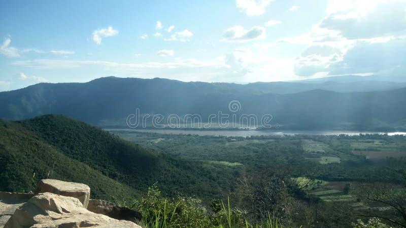 En sikt av den peruanska djungeln arkivfoto