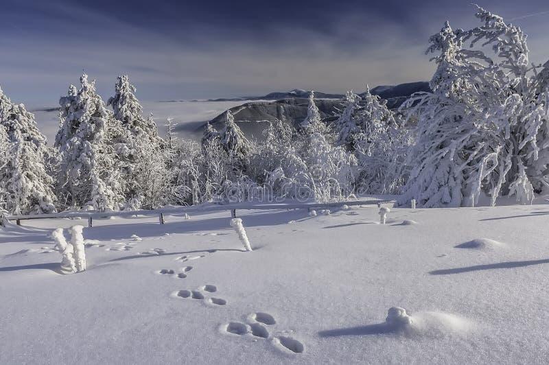 En sikt av ett vinterlandskap uppifrån av det Radhost berget royaltyfria foton