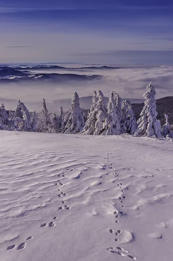 En sikt av ett vinterlandskap uppifrån av det Radhost berget royaltyfri foto