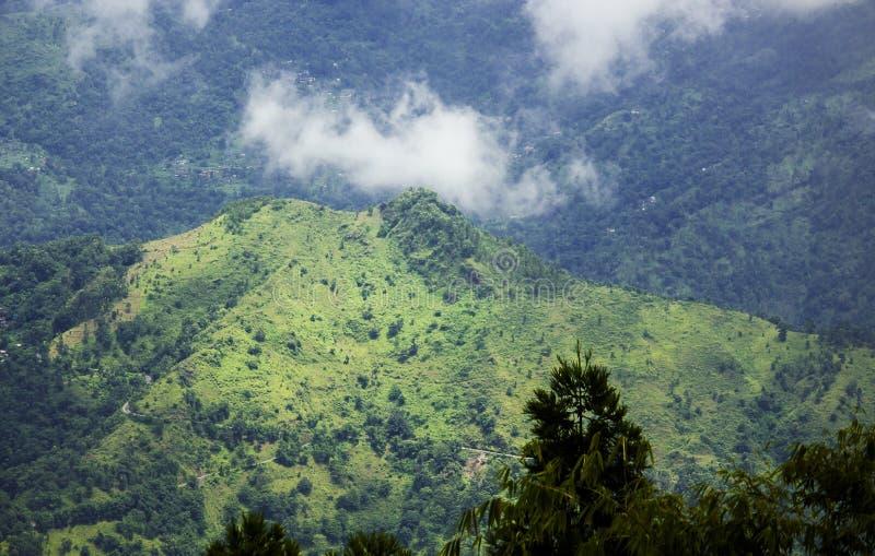 En sikt av gröna kullar från shelpukullar, västra Bengal royaltyfria foton