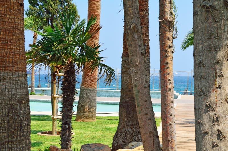 En sikt av Molos promenad på kusten av den Limassol staden i Cypr royaltyfri bild