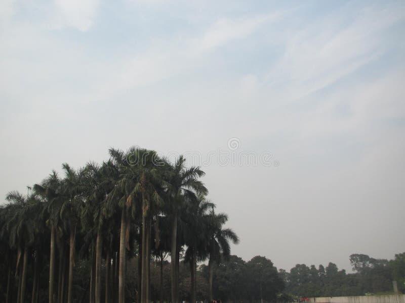 En sikt av parkerar i Dhaka royaltyfri bild
