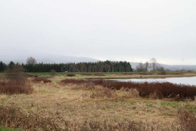 En sikt av slingan, ängen och floden med cyklisten i bakgrunden arkivbild