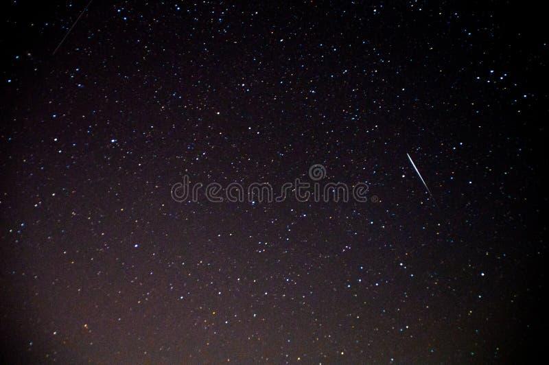 En sikt av stjärnorna av Vintergatan med träd i förgrunden Perseid meteorregn royaltyfri foto
