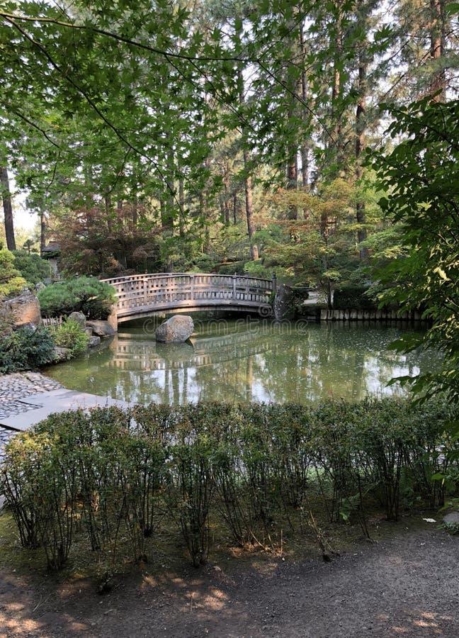 En sikt av en träbro över ett damm på en japansk trädgård arkivbilder