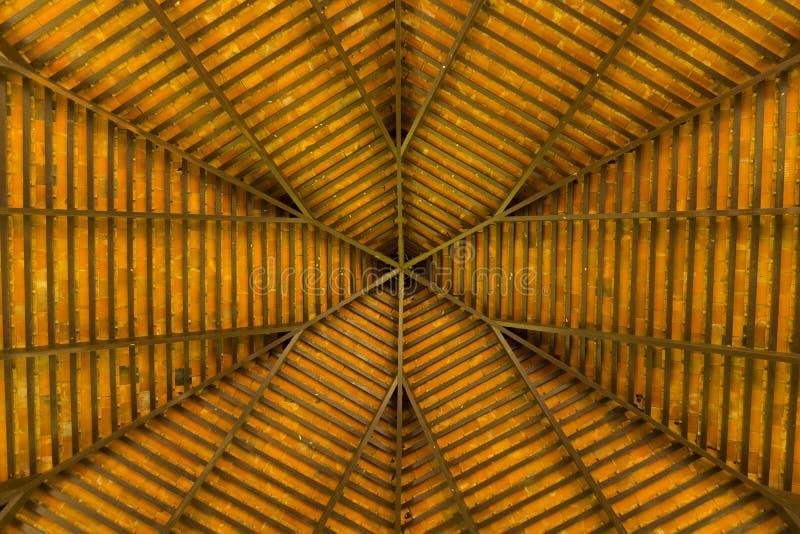 En sikt av under ett trätak arkivfoto