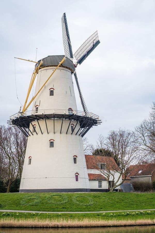 En sikt av en väderkvarn på solnedgången på en yttersida Middelburg, Nederländerna för kanal precis royaltyfria bilder