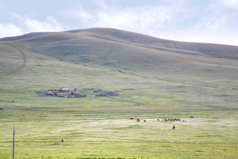 En sikt från detSiberian drevet på Ulaanbaatar, Mongoliet arkivfoto