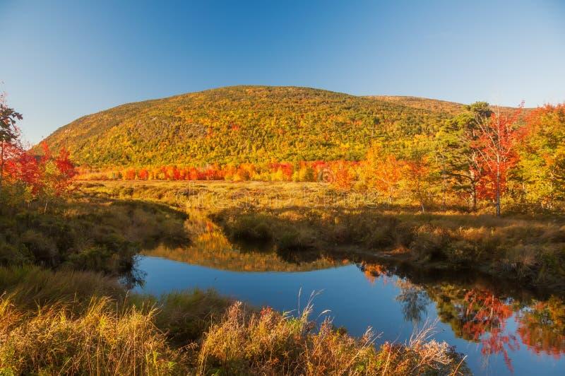En sjö bland kullarna med ljusa färgrika höstträd solig dag Acadianationalpark USA maine royaltyfri fotografi