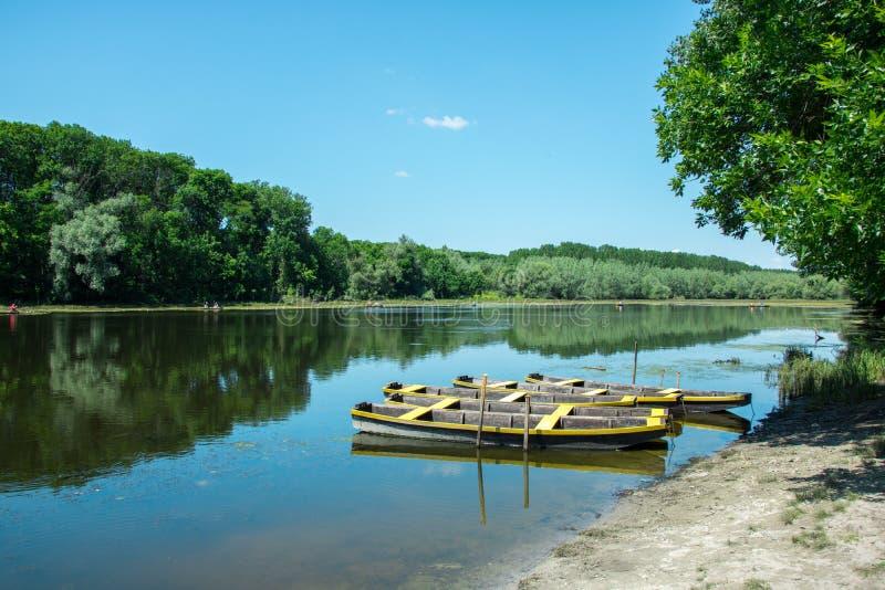 En sjö med träfartygen vid kusten arkivbilder