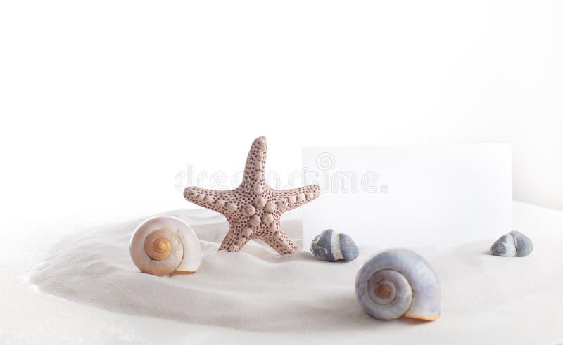 En sjöstjärna, havsskal, stenar och en anmärkning på vit bakgrund royaltyfria foton