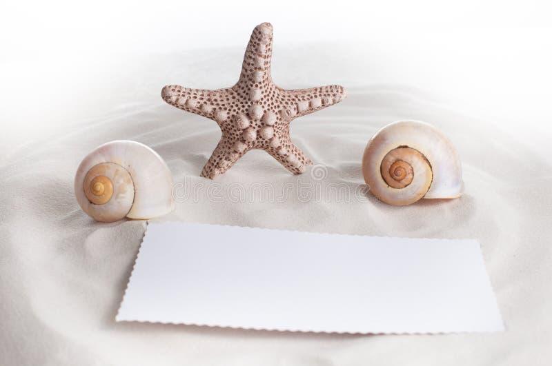 En sjöstjärna, två skal och en anmärkning på vit sand arkivbild