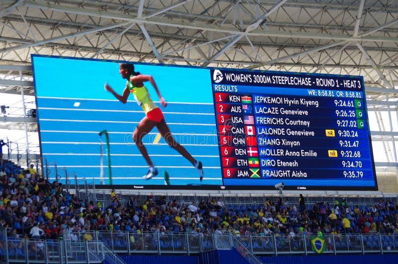 En skodd etiopisk Steeplechaser Etenesh Diro royaltyfri fotografi