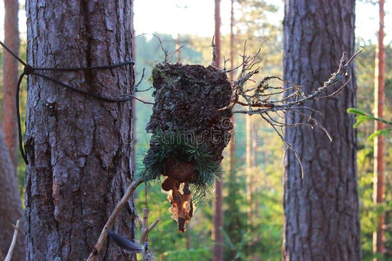 En skogförebild från skällpinnen och sörjer kottar som göras för att lirka andarna paganism royaltyfri foto
