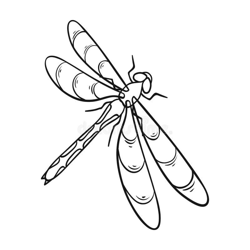 En slända, ett rov- kryp Symbol för ryggradslöst kryp för sländaflyg enkel i materiel för symbol för översiktsstilvektor vektor illustrationer