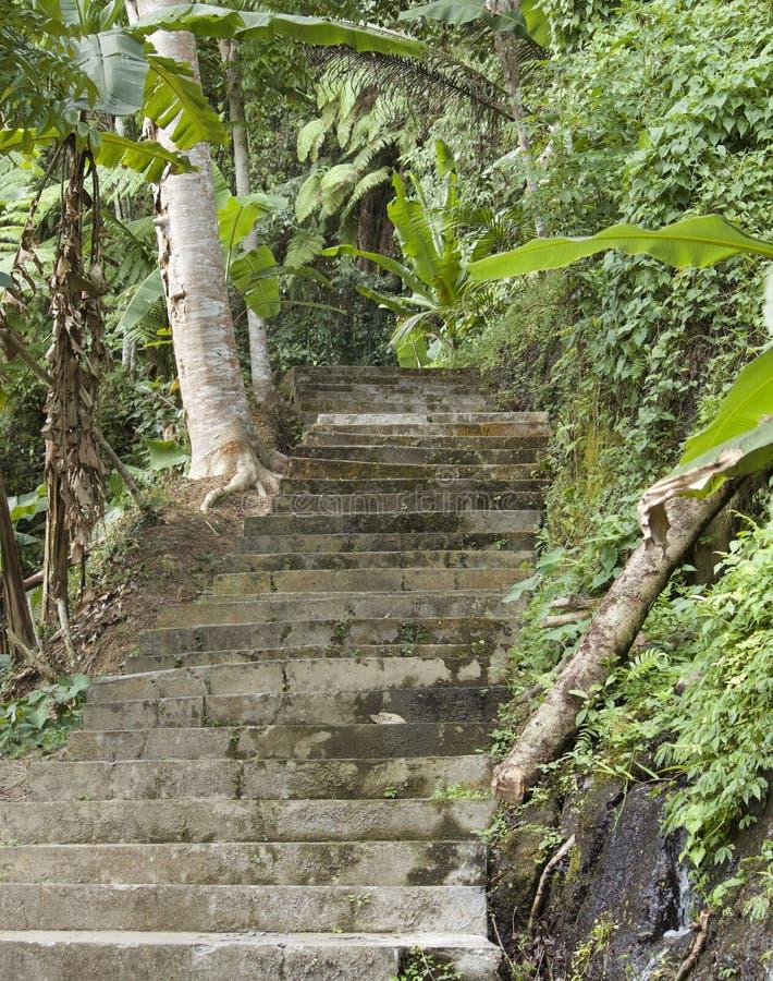 En slinga av gammal trappa för århundrade royaltyfri fotografi