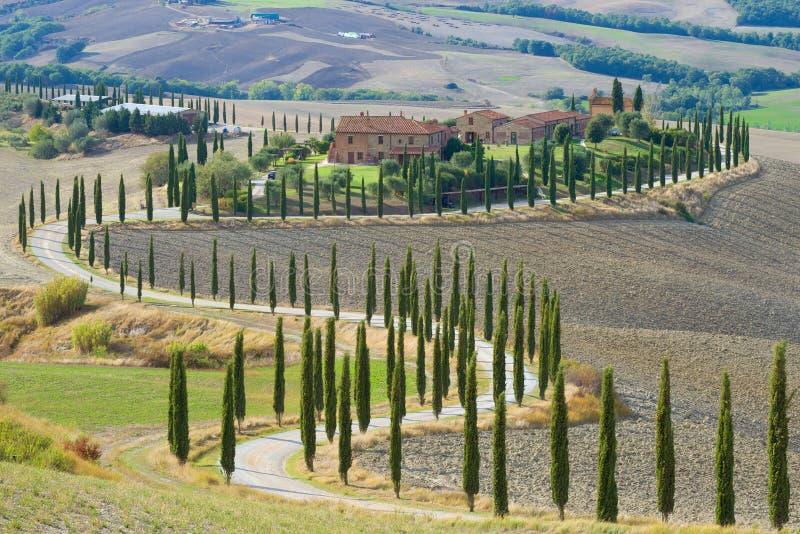 En slingrig väg med popplar nära ett gammalt italienskt säteri höst tuscany arkivbilder