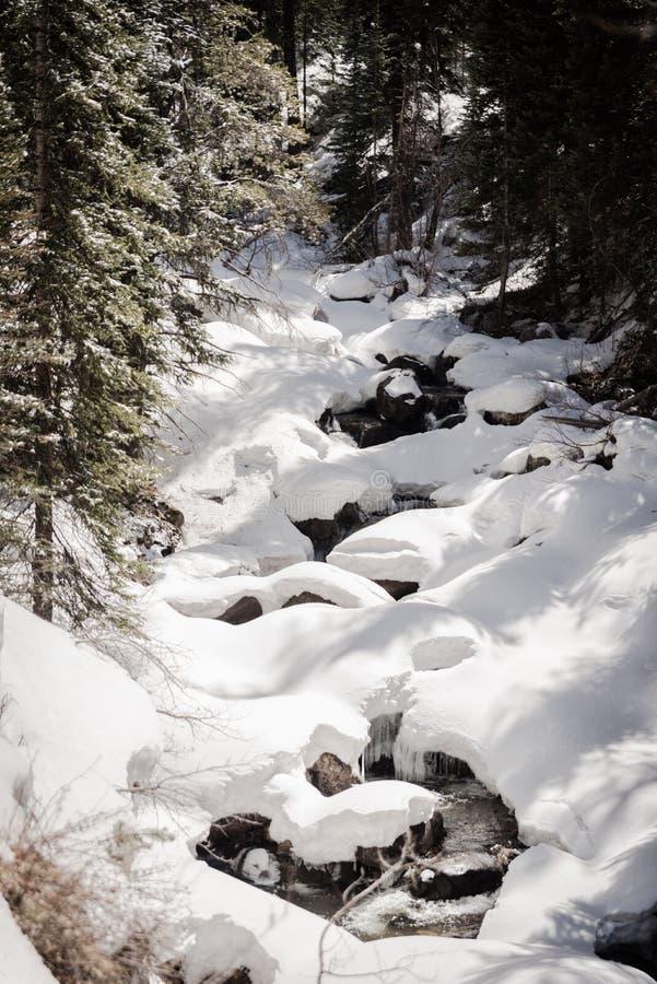 En snö täckte floden nära Vail, Colorado arkivfoton