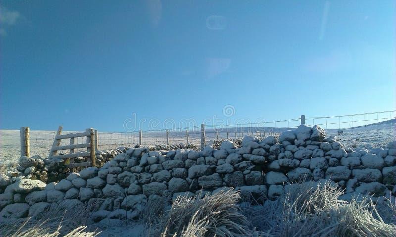 En snöig dag i Skottland royaltyfria foton
