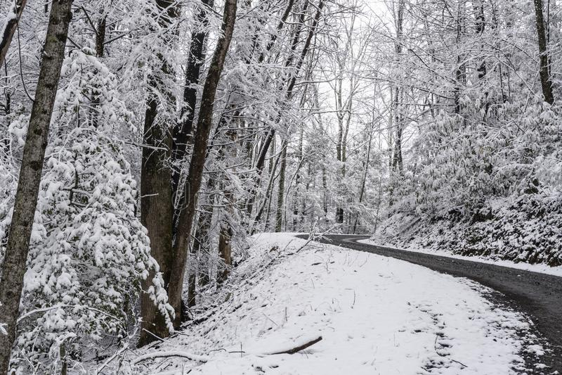 En snöig vinterdag längs en bergväg i Tennessee fotografering för bildbyråer