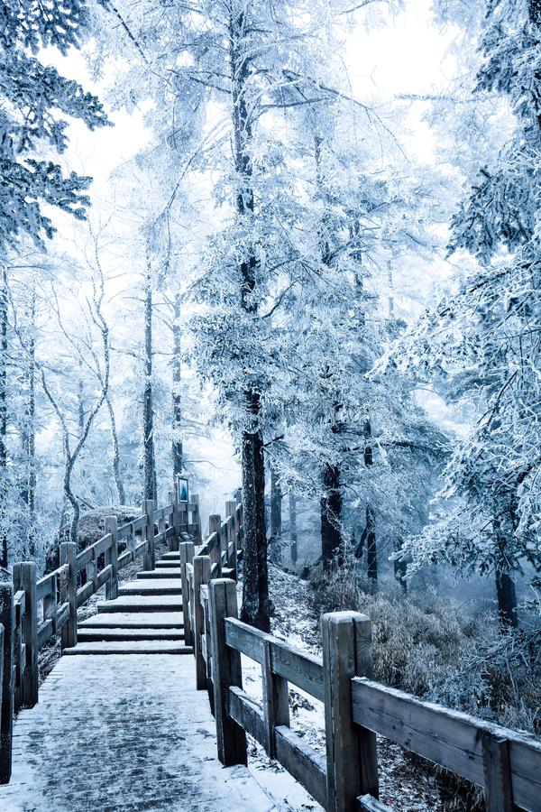 En sn?ig sikt av xiling sn?muntain arkivfoto