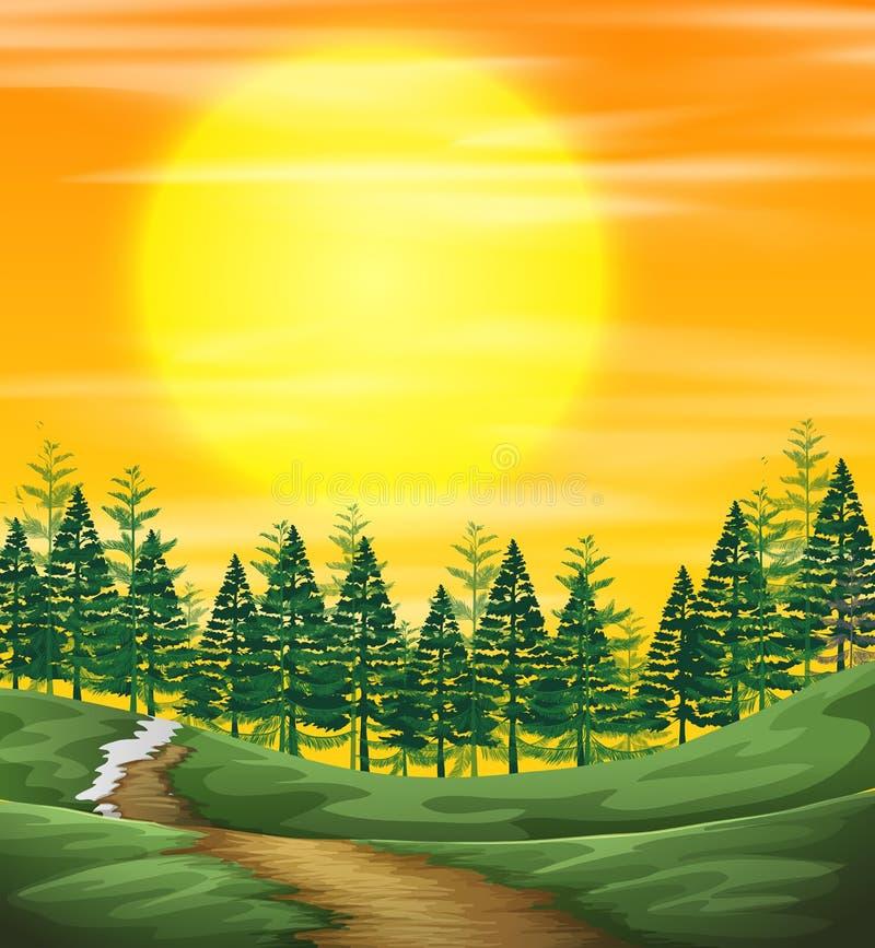 En solnedgångnatursikt vektor illustrationer