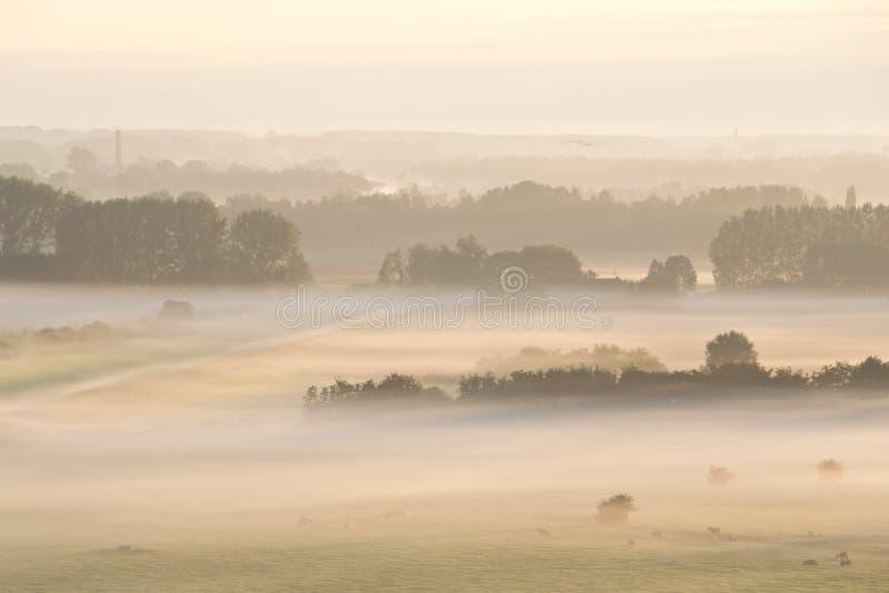 En soluppgång ovanför dimman arkivfoton
