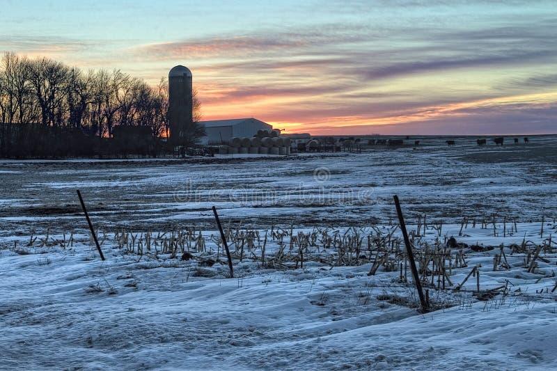 En soluppgång tidigt på en kall vintermorgon i lantliga South Dakota nära dalen fjädrar fotografering för bildbyråer