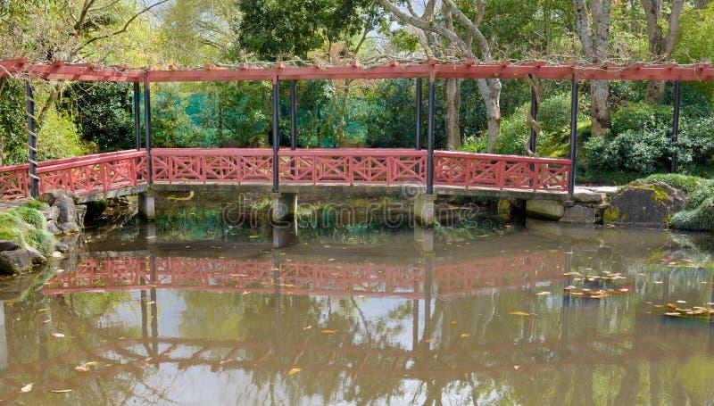 En spång över ett damm i en kinesisk trädgård på Hamilton Botanic royaltyfri bild