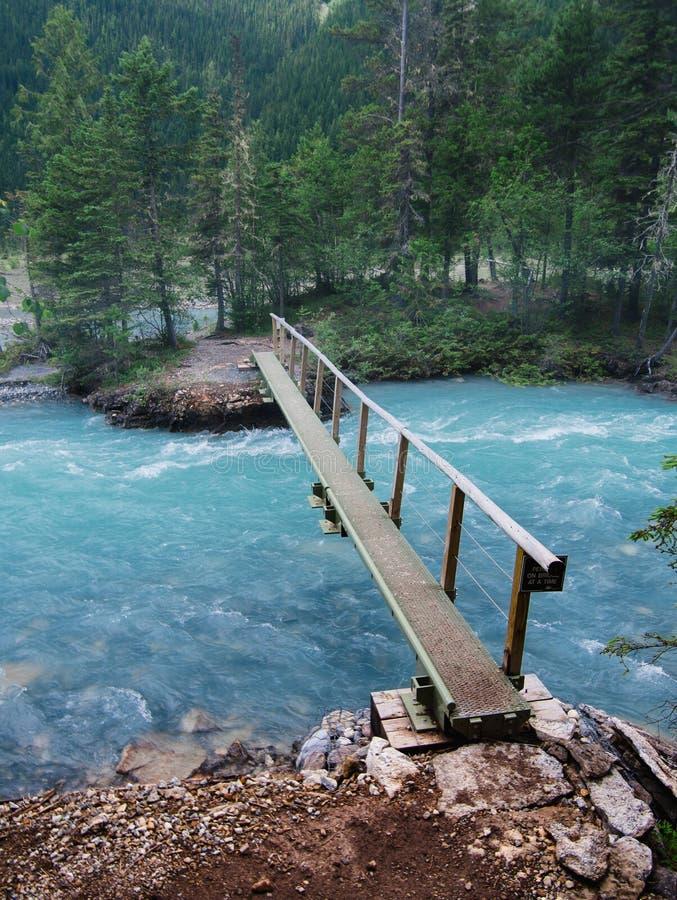 En spång på slingan till Berg sjön royaltyfri bild