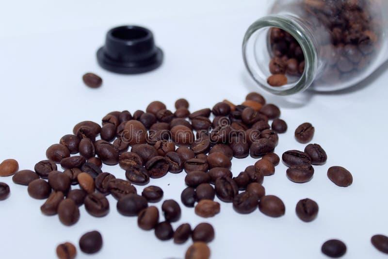 En spridning av kaffeb?nor royaltyfri foto