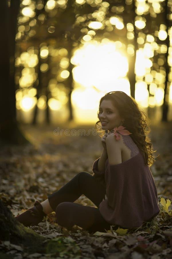 En stående av en härlig ung kvinna i en höstskog Lifes arkivfoto