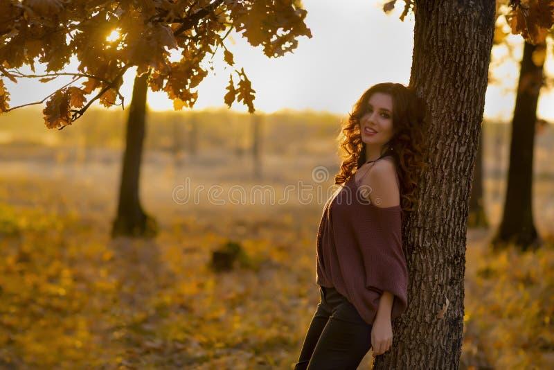 En stående av en härlig ung kvinna i en höstskog Lifes arkivfoton