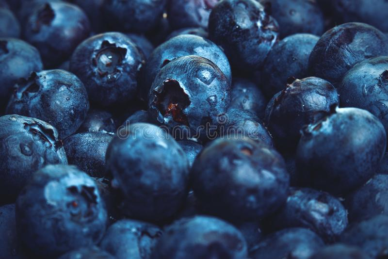 En stor hög av blåbär arkivfoton