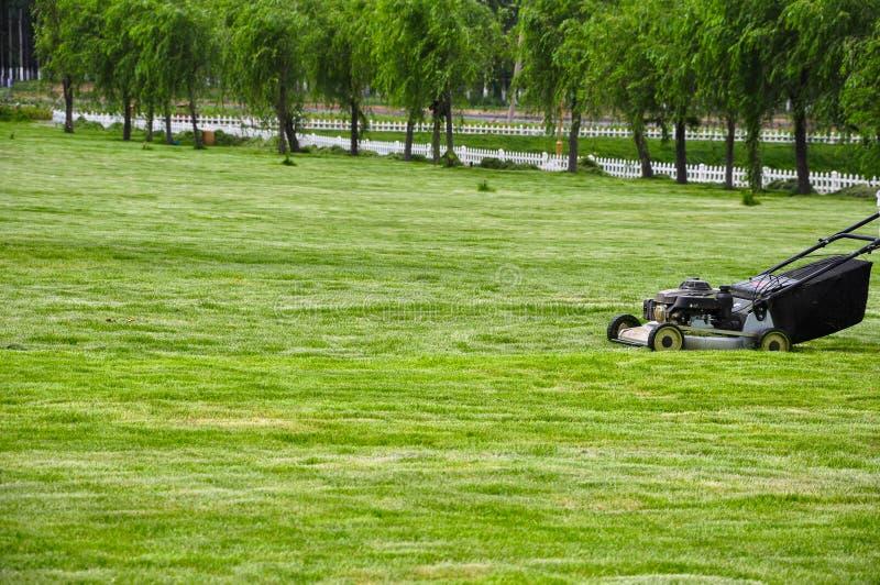 En stor och ren gräsmatta, genom att meja arkivfoton