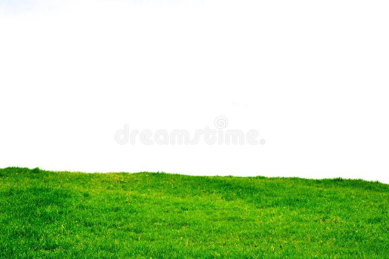 En stor och ren gr?smatta vid himmel royaltyfria bilder