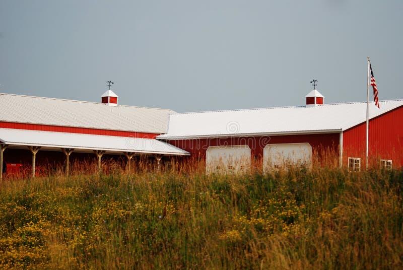 En stor röd ladugård i lantliga Wisconsin med lösa gräs arkivbild