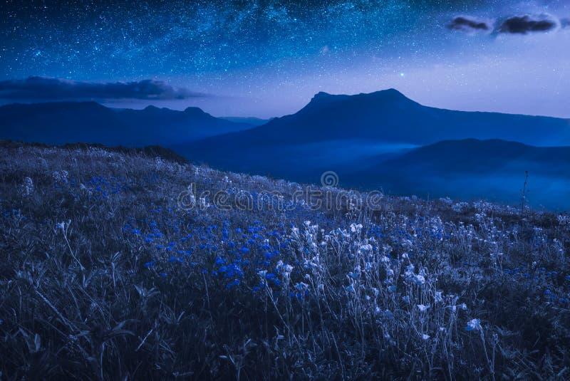 En stor sikt av bergdalen på natten royaltyfri foto
