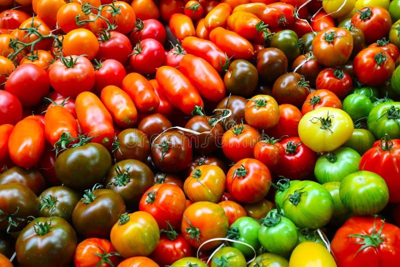 En stor variation av tomaten arkivbild