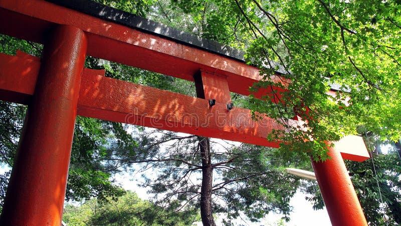 En stora Torii, en traditionell japansk port grundar mest gemensam på ingången av eller inom en Shinto relikskrin royaltyfri fotografi