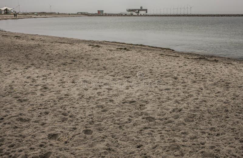 En strand, Köpenhamn, Danmark fotografering för bildbyråer