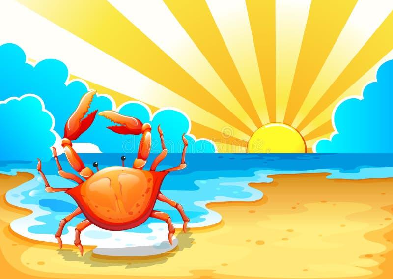 En strand med en krabba stock illustrationer