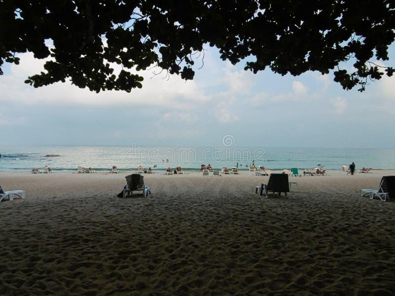 en strand med några personer på den royaltyfri foto